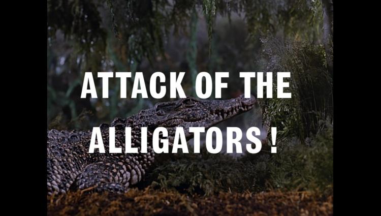 AttackOfTheAlligators!00021.jpg