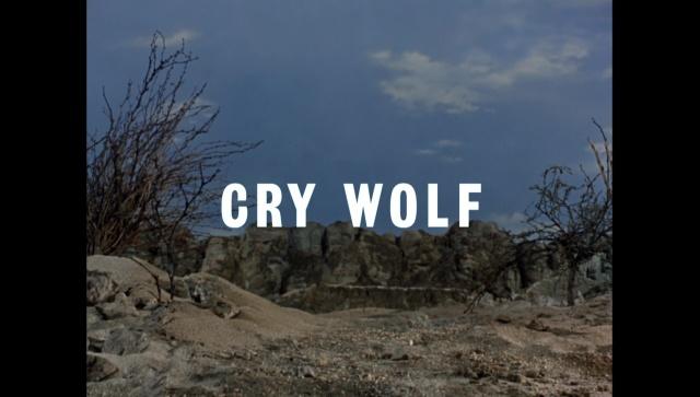 CryWolf00052.jpg