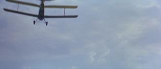 Thunderbird603339