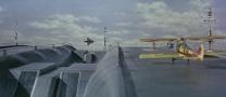 Thunderbird603458