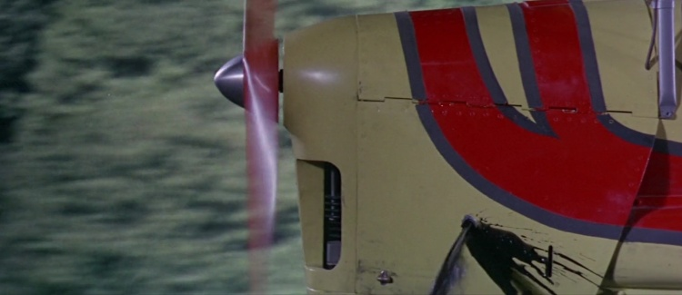 Thunderbird603788.jpg