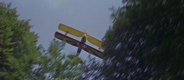 Thunderbird604571