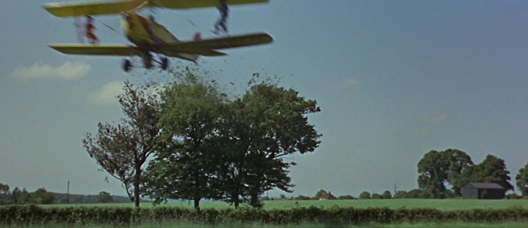 Thunderbird604586.jpg